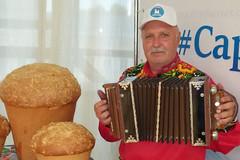 ozarnie-kolokolchiki-9994