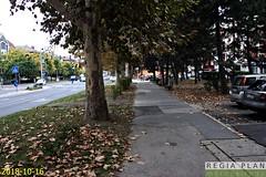 IMG_3302 (Regia Plan) Tags: tervezés útépítés útépítésiterv úttervezés regiaplan siófok parktervezés civilengineering road roaddesign