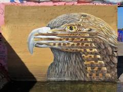 Cee Pil / Dok Noord - 13 okt 2018 (Ferdinand 'Ferre' Feys) Tags: gent ghent gand belgium belgique belgië streetart artdelarue graffitiart graffiti graff urbanart urbanarte arteurbano ferdinandfeys ceepil