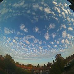 Bloomsky Enschede (October 16, 2018 at 05:41PM) (mybloomsky) Tags: bloomsky weather weer enschede netherlands the nederland weatherstation station camera live livecam cam webcam mybloomsky