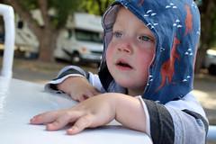 Paul (quinn.anya) Tags: paul toddler jellystonepark