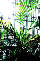 Warsaw - the Capital of Poland (yourglitter) Tags: warsaw capital of poland skyscrapers malls złote tarsay rondo 1 buildings street city towers fast food new future futuristic center centre downtown wieżowce drapacze chmór nowoczesna miasto polska modern colourfull life shopping airport lights evening sunny day commercial photography photographs pictures nice beautiful polish warszawa night scenes odbudowana wskrzeszona rebuilt resurected glitter jan siestrzeńcewicz yourglitter mall arkadia wfc warszawskie centrum finansowe intercontinental hotels hotel cafe