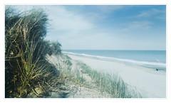 Caister beach (MixPix ) Tags: caister norfolk uk beach dunes grass sea sky sand
