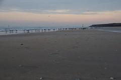 JLF16355 (jlfaurie) Tags: deauville normandie normandy france francia dqaniel mariefrance louisette mechas mpmdf jlfr jlfaurie pentax k5ii plage playa beach seaside mer mar sea