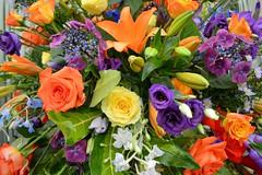 Flowers (Seventh Heaven Photography **) Tags: 126th shrewsbury flower show august 2013 nikon d3200 flowers flora blooms shropshire england display orange yellow purple lilies roses