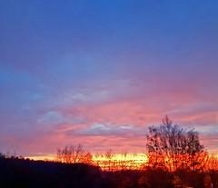 That was only yesterday.... (Tobi_2008) Tags: sonnenaufgang sunrise himmel sky bäume trees senftenberg brandenburg deutschland germany allemagne germania