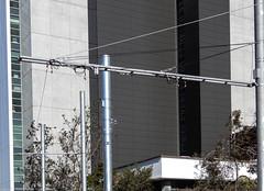 CBD & South East Light Rail - High Street, Randwick - Update 2 October 2018 (3) (john cowper) Tags: cselr sydneylightrail randwick highstreet construction infrastructure transportfornsw altrac spanpoles hangers staff sydney newsouthwales
