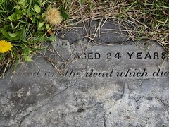 blessed are the dead (Rhisiart Hincks) Tags: dearmadta ahaztuta anonymous dienw ue eu europe ewrop lloegr england forgotten anghofiedig weeds chwyn sirgaerhirfryn lancashire fylde blackpool gravestone carregfedd grave bedd