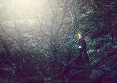 Lost ({jessica drossin}) Tags: jessicadrossin portrait photography beautiful dress dark trees branches spooky halloween creepy redhair redhead forrest wwwjessicadrossincom