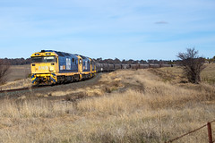 Rounding the Curves (PJ Reading) Tags: train rail railway track transport travel transportation cargo goods freight locomotive intermodal container superfreighter diesel pacificnational pn pacnat wheat flour grain manildra 81class centralwest nsw bathurst afternoon australia newsouthwales