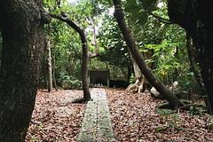 shrine (Vinzent M) Tags: ishigaki 石垣 japan 日本 leica r r4 agfa vista zniv summicron 50