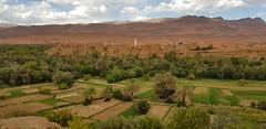 20181008_154940 (accidori) Tags: oasi marocco thinghir atlas