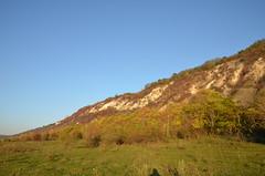 DSC_5454 (Sector2000) Tags: осень золотаяосень парк природа листья деревья automn выходной лес парки