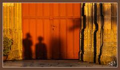Les visiteurs du soir / Evening visitors - Sainte-Catherine-de-Fierbois (christian_lemale) Tags: saintecatherinedefierbois coucher soleil sunset touraine france nikon d7100