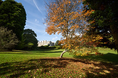Autumn at Sheffield Park Gardens. Sussex (Splat Photo) Tags: sheffield park gardens sussex sony 1224 1224f4 1224g a7iii a7m3 autumn leaves national trust nt ilce7m3