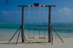 Columpio en Maldivas.