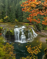To see places like this is the reason I planned my road trip to take me to the PNW in fall. Lower Lewis River Falls, Gifford Pinchot National Forest [OC] [6043×7554] by burritos-are-life (-WildPigs-) Tags: reddit earth