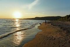 DSC_4858 (PaulPagéPhotos) Tags: d850 lakesuperior provincialpark neys northernontario travel hwy17 greatlakes sunsets vizsla dogs canine