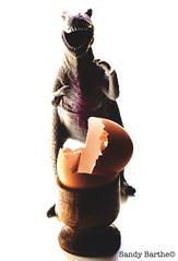 symbol of(f) life (sandy barthe) Tags: sandy barthe dino dinosaurus dinosaure dinosaur egg oeuf