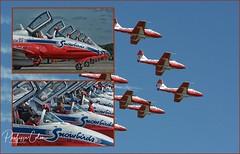 page06 (Mephisto3) Tags: rcaf snowbirds 431sqdn aerogatineau2018 gatineau acrobatic cynd airshow demo avgeek