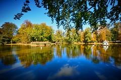 Autumn  is coming.... (Tobi_2008) Tags: teich pond wasser water bäume trees spiegelung reflection zabeltitz grosenhain sachsen saxony deutschland germany allemagne germania