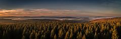 forest series #140 (Stefan A. Schmidt) Tags: sunrise sun landscape germany sonnenaufgang clouds cloud wolke fog mist nebel