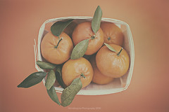 Tangerines (Graella) Tags: tangerines mandarinas naranja orange stilllife bodegon cenital nature minimal minimalist minimalismo food fruit fruita fruta healthy vegetarian organic