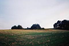 Landscape II (kotmariusz) Tags: landscape field horizon trees poland pole drzewa krajobraz 35mm filmphotography analog film filmisnotdead fujifilm olympusom40