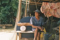 Koh Lanta (mr. Wood) Tags: lanta film leica leicam m6 summilux voigtlander wideheliar sunset thailand krabi andaman rooster fighting cockfight gambling arena chicken filmisnotdead ishootfilm leicathailand leicausa leicarussia