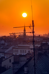 Above us all (Soren Wolf) Tags: sunset sun orange warm cracow kraków city tower church bird animal roofs nikon d7200 jupiter 37a 135mm