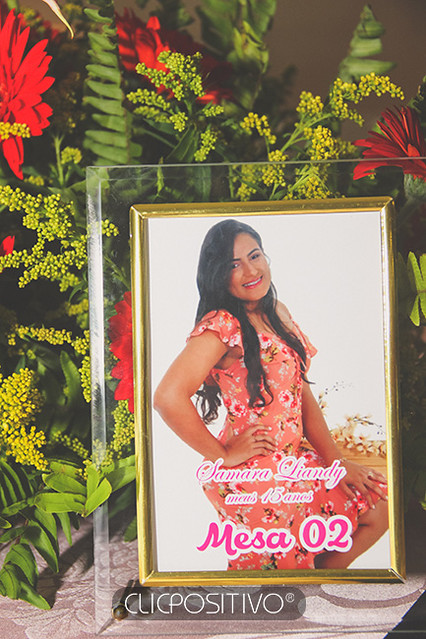 SAMARA (15)