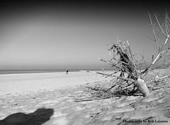 blogRIMG0404threatening beach