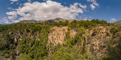 Parque Nacional La Campana, Chile (VonFer Madness) Tags: parquenacionallacampana vonfer conaf chilean chile nikonflickraward nikkor1224mm