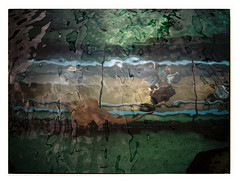 Shovelnose Ray (@fotodudenz) Tags: fuji fujifilm ga645w ga645wi medium format point and shoot film rangefinder 28mm 45mm 2018 120 sydney nsw new south wales australia kodak portra 400 street photography darling harbour