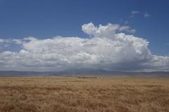 Ngorongoro Crater_Tansania (motohakone) Tags: wolken clouds sky himmel