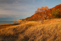 Lake Michigan - Autumn (cedarkayak) Tags: sleepingbeardunes autumn shoreline beach colors cottonwood southmanitouisland empirebluffs lakemichigan fall dunegrass explore