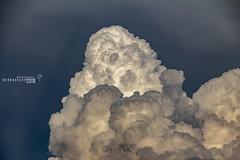 061818 - Billowing Beautiful Nebraska 003 (NebraskaSC Photography) Tags: nebraskasc dalekaminski nebraskascpixelscom wwwfacebookcomnebraskasc stormscape cloudscape severeweather severewx nebraska nebraskathunderstorms nebraskastormchase weather nature awesomenature storm thunderstorm clouds cloudsday cloudsofstorms cloudwatching stormcloud daysky badweather weatherphotography photography photographic warning watch weatherspotter chase chasers newx wx weatherphotos weatherphoto sky magicsky extreme darksky darkskies darkclouds stormyday stormchasing stormchasers stormchase skywarn skytheme skychasers stormpics day orage tormenta light vivid watching dramatic outdoor cloud colour amazing beautiful thunderhead thunderheads stormviewlive svl svlwx svlmedia svlmediawx