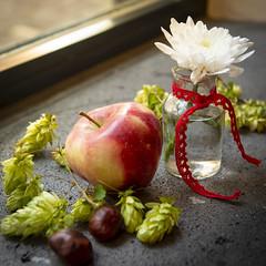 Autumn decoration  //  Herbstdekoration (Martin Bärtges) Tags: farbenfroh colorful apple apfel d4 nikonfotografie nikon kastanien decoration herbstfarben herbst autumn blumen flowers