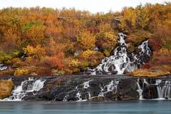 Lovely Hraunfossar (Sophie Carr Photography) Tags: hraunfossar husafell iceland autumncolours autumn waterfall picturesque fall