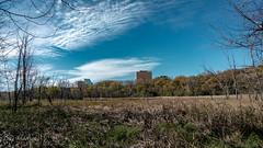 National Wildlife Refuge (Lzzy Anderson) Tags: nationalwildliferefuge minnesota october 2018 woods forest landscape sky blue bluesky clouds