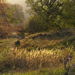 Karst trail thumbnail