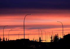 Energy Transformation (Golden Ginkgo) Tags: nightshot urbanlandscape