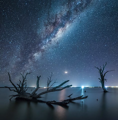 She's A Star (Michael Waterhouse Photography) Tags: