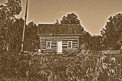 Week 40 - Vision: Classic Novel (Gustav2Adolph) Tags: littlehouseontheprairie gustavusadolphuscollege linnaeusarboretum borgeson family cabin dogwood dogwood52 dogwood2018 dogwoodweek40 dogwood2018week40 nikon d3100 sepia borgesonfamilycabin 1866