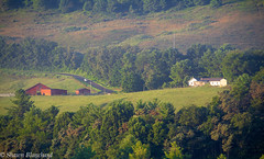 Farm in the Mountains (Shawn Blanchard) Tags: farm green trees mountains mountain appalachian ashe county north carolina nc agriculture farming barn red house grass livestock fields