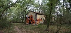 777 (repaze black) Tags: repaze 777 saïr gironde foret france mur peinture art abandonned abstract house