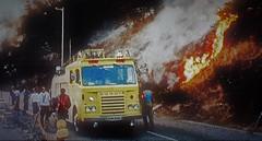 Firefighting 1976. (ManOfYorkshire) Tags: dennis fire engine tender appliance fighting firemen 1976 nostalgia history roadside grassland yellow