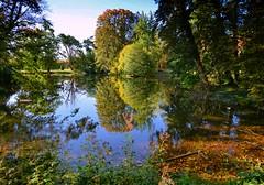 Afternoon at the pond (Tobi_2008) Tags: teich pond herbst autumn seuslitz natur nature landschaft landscape sachsen saxony deutschland germany allemagne germania