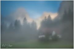Polsterluck im Morgennebel (Karl Glinsner) Tags: landschaft landscape österreich austria oberösterreich upperaustria salzkammergut outdoors morning morgen nebel fog bäume trees hinterstoder polsterlucke