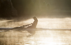 Morning Rower (Tracey Whitefoot) Tags: 2018 tracey whitefoot nottingham nottinghamshire river trent embankment bridge rower rowing autumn mist misty morning victoria lone solo light sunrise october